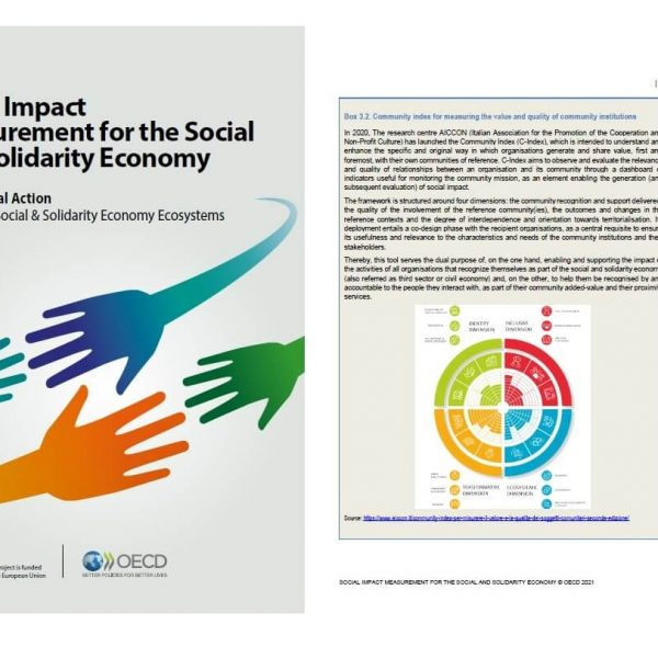 Social impact measurement for the Social and Solidarity Economy